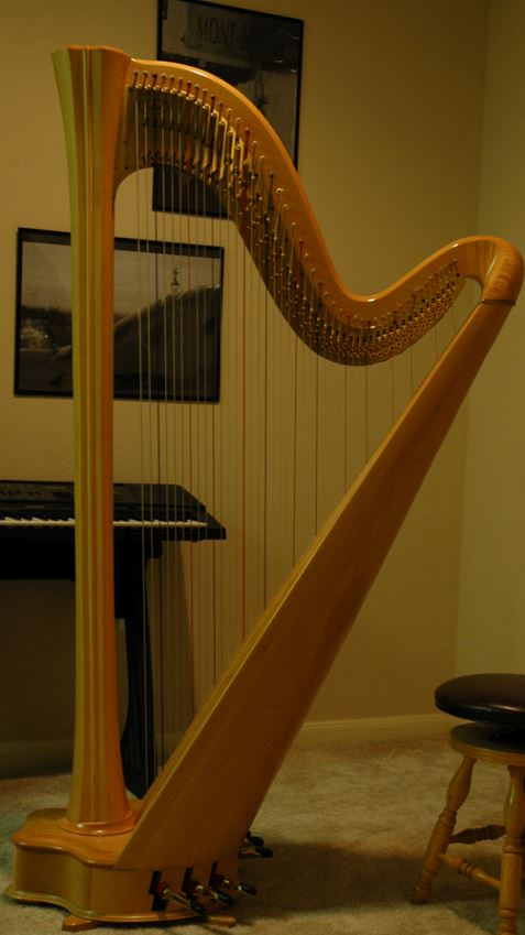 Harp Houston Harpist